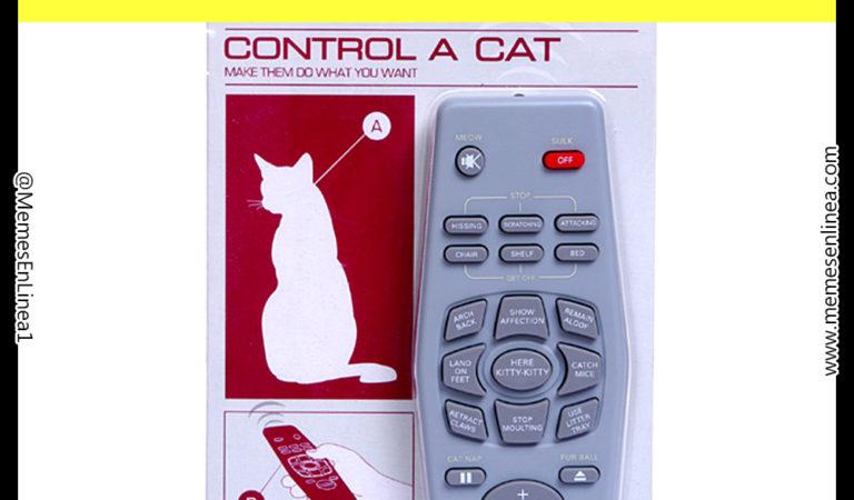 Control remoto para gatos